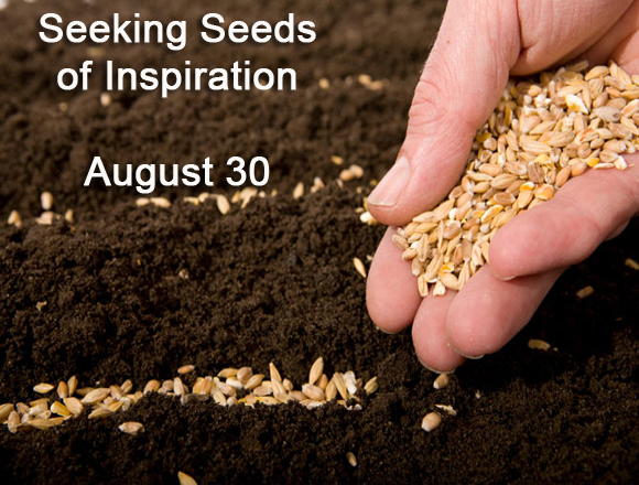 Seeking Seeds of Inspiration